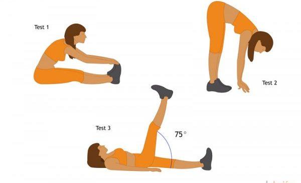 ejercicios de flexibilidad isquiotibiales
