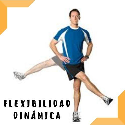 flexibilidad dinamica